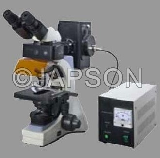 Fluorescent Microscope, Research