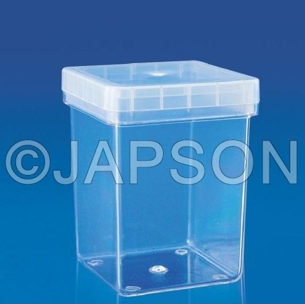 Megenta Box
