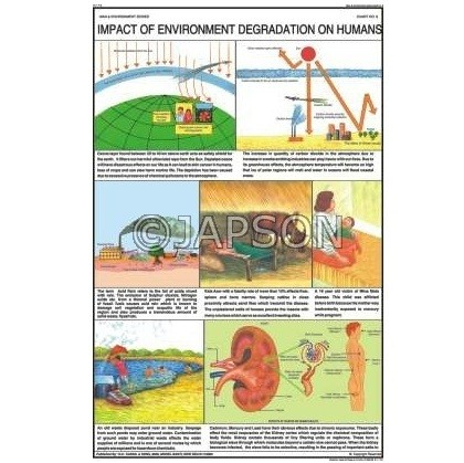Man & Environment Charts, School Education