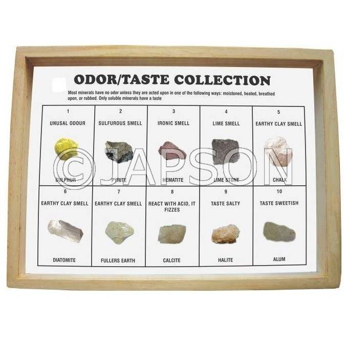 Odor/Taste Collection, Set of 10