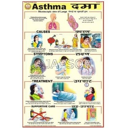 Prevent The Diseases Charts, School Education
