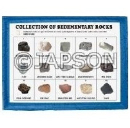 Sedimentary Rocks Set, Collection of 15 Sedimentary Rocks