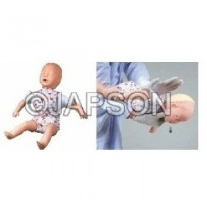 Baby Obstruction Model
