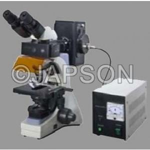 Fluorescent Microscope, Research