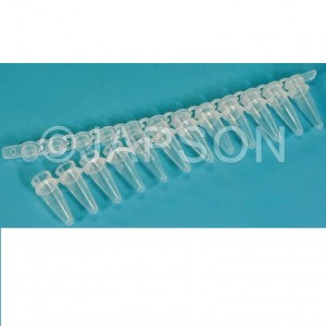 PCR Tube Strip