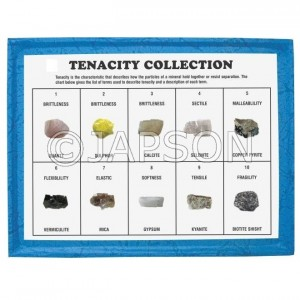 Tenacity Collection, Set of 10