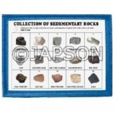 Sedimentary Rocks Set, Collection of 15 Sedimentary Rocks