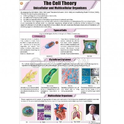 General Science (I) Charts, School Education