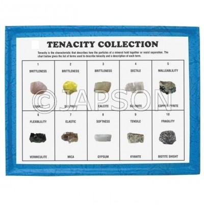 Tenacity Collection, Set of 10