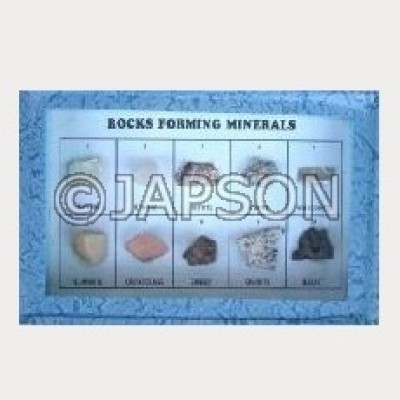 Forming Minerals Set, Collection of 10 Rocks Forming Minerals