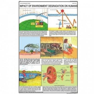 Man & Environment Charts, School Education
