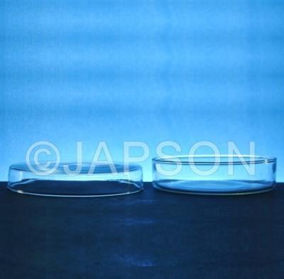 Petri Dishes, Clear Glass